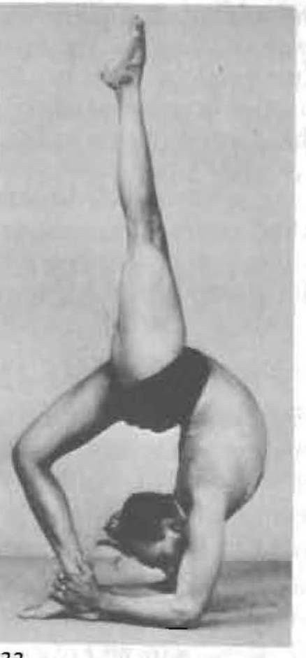 179-eka-pada-viparita-dandasana-2-yoga-pose-iyengar.jpg