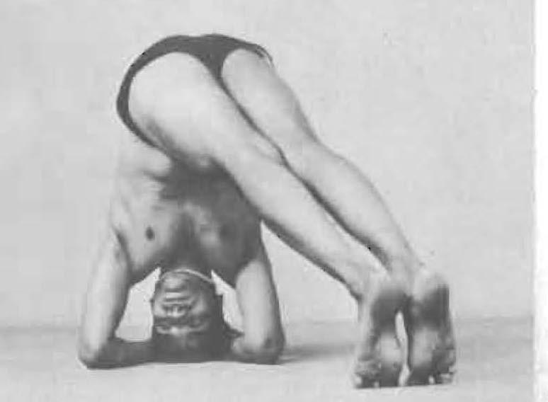 181d-mandalasana-yoga-pose-iyengar.jpg