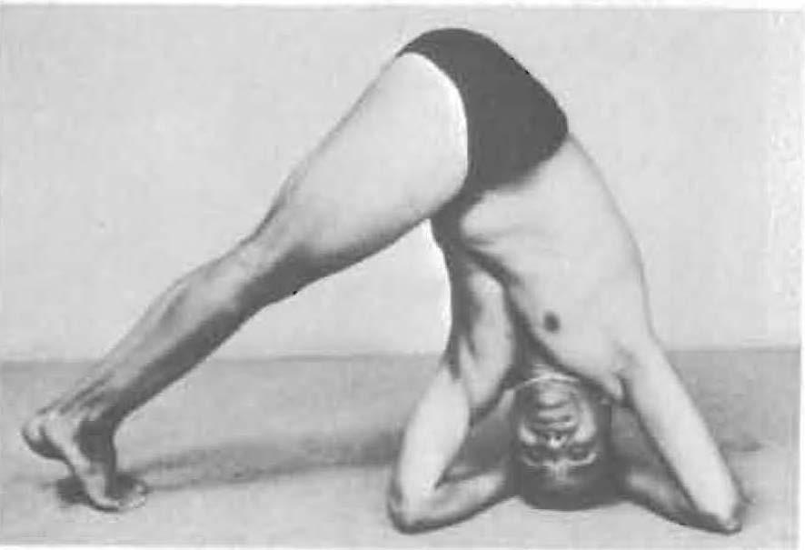 181e-mandalasana-yoga-pose-iyengar.jpg
