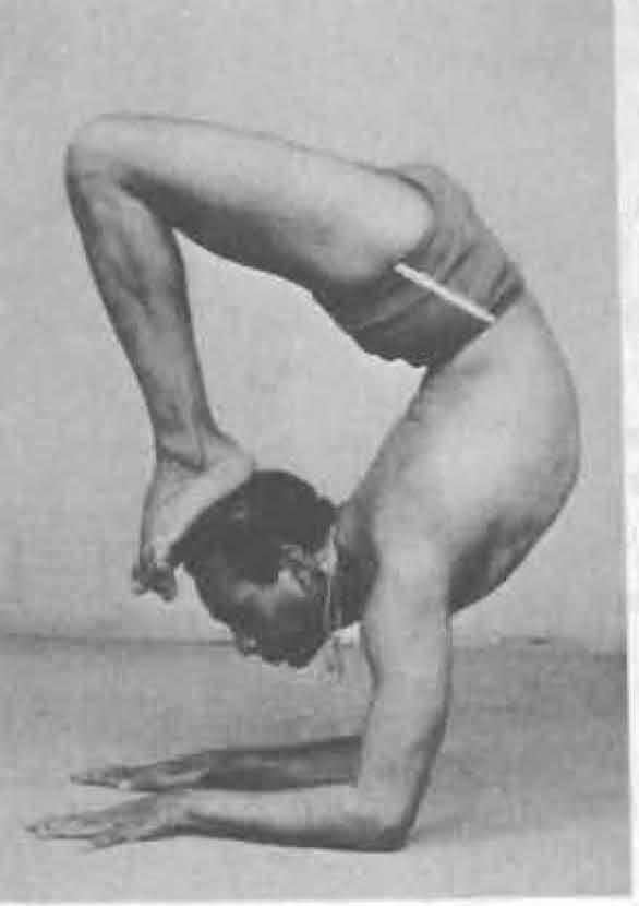 182-vrschikasana-1-yoga-pose-iyengar.jpg