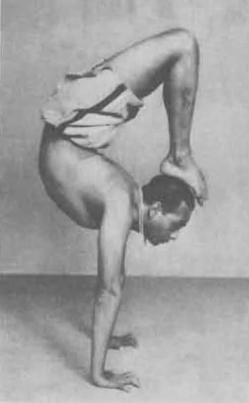 183-vrschikasana-2-yoga-pose-iyengar.jpg
