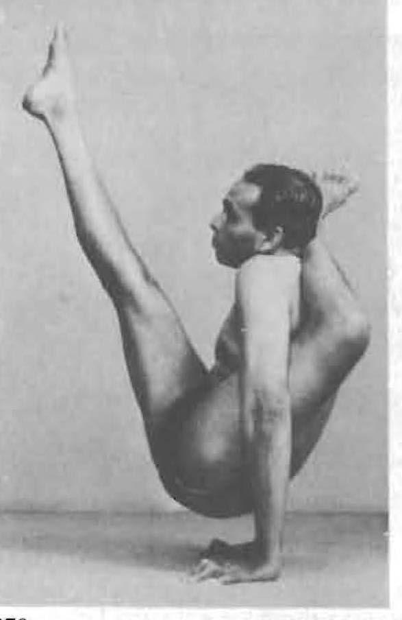 140-chakorasana-yoga-pose-iyengar.jpg