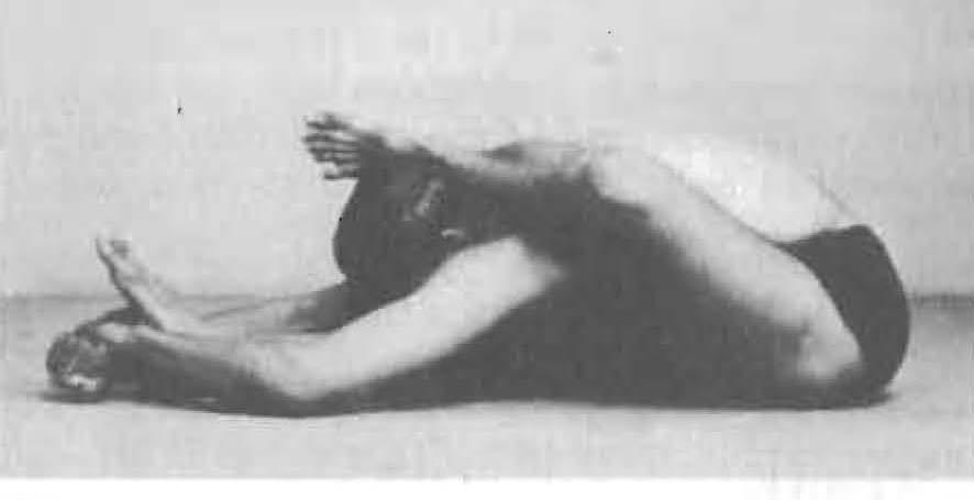 135-skandasana-yoga-pose-iyengar.jpg