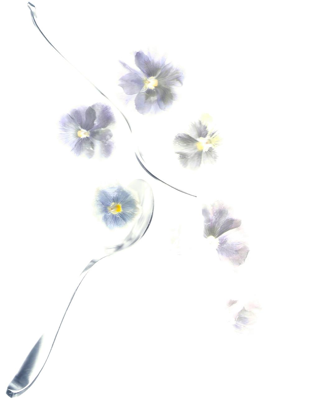 Flora_01.jpg