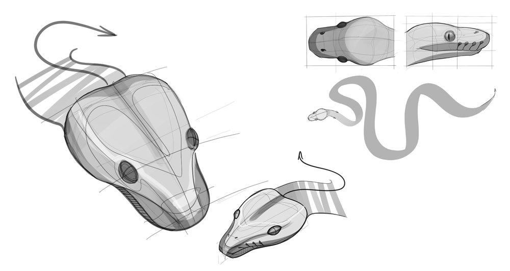 Ball Python Study