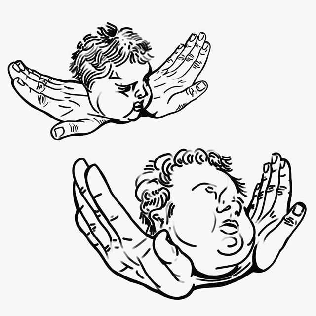 Cherub Fly  #KNEES