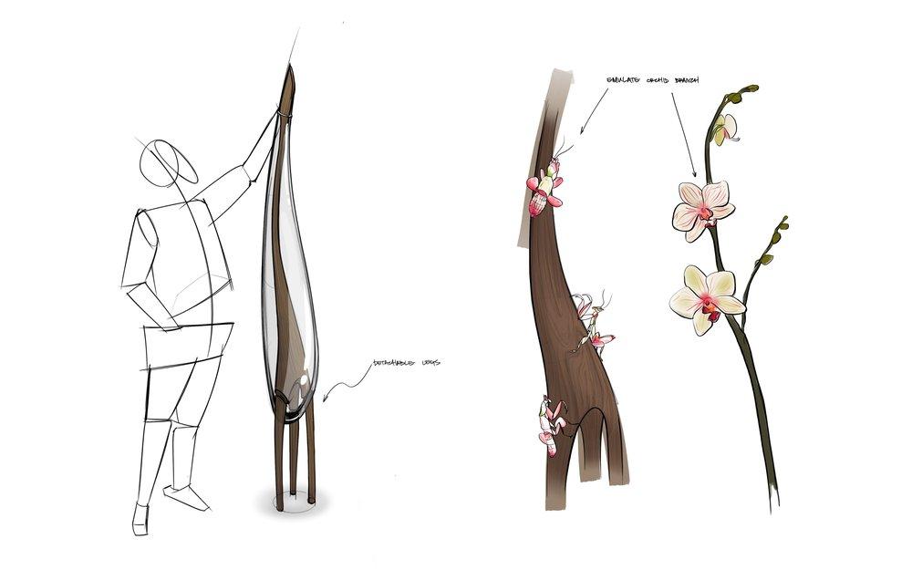OrchidMantis.jpg