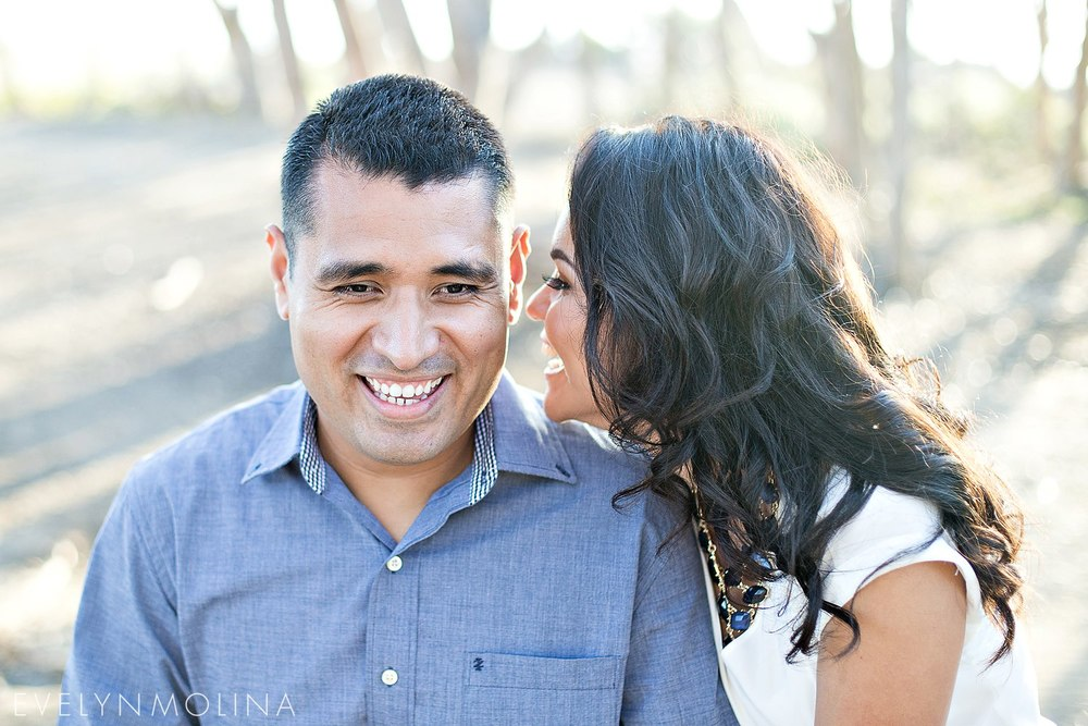 Sunset Cliffs Engagement - Berenice and David_001.jpg