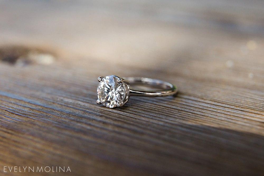 La Jolla Proposal - Noor and Joe_0033.jpg
