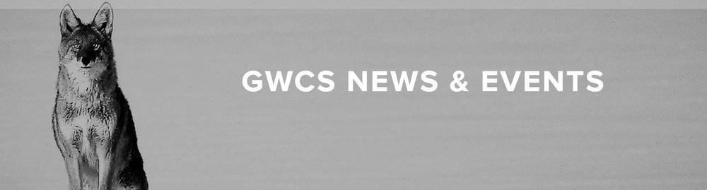 News Blog Banner.JPG