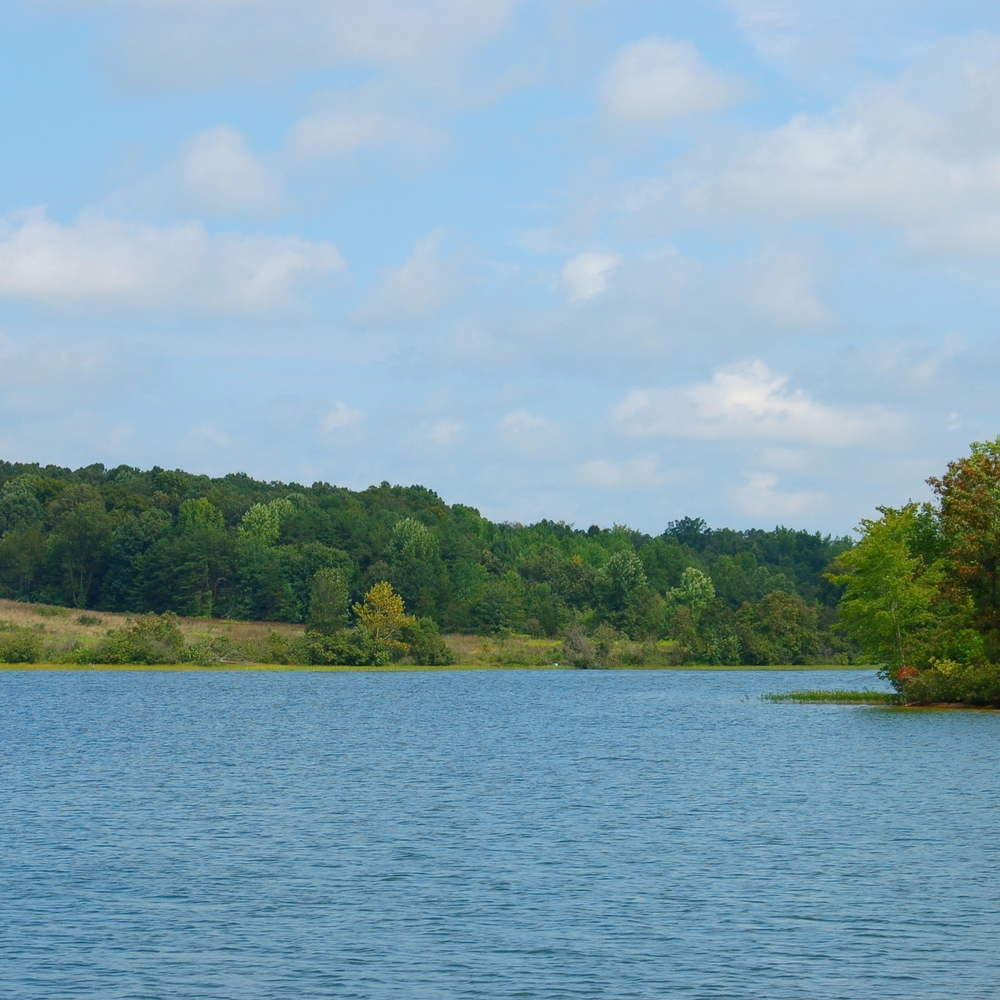 Lake_Anna_State_Park.jpg