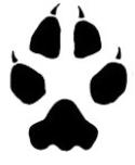 coyote paw.jpg