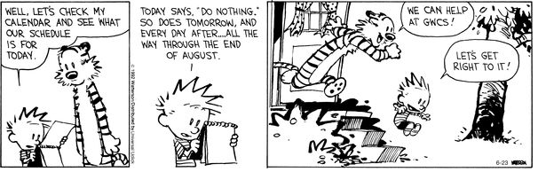 Calvin - summer student volunteers.png
