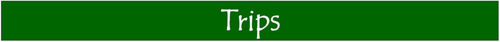 banner - trips.JPG