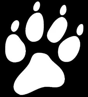 coyoteprint.jpg