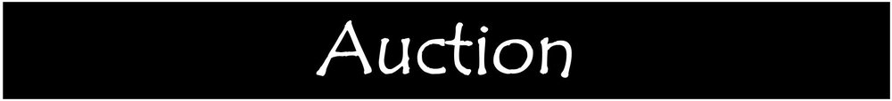 b-banner-AUCTION.JPG