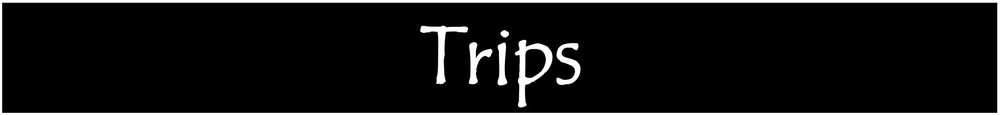 b-banner-TRIPS.JPG