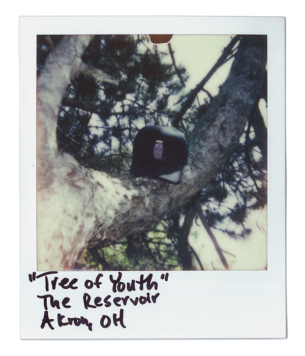 Tree of Youth