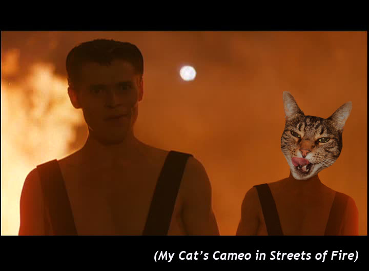 My Cat's Cameo in  Streets of Fire