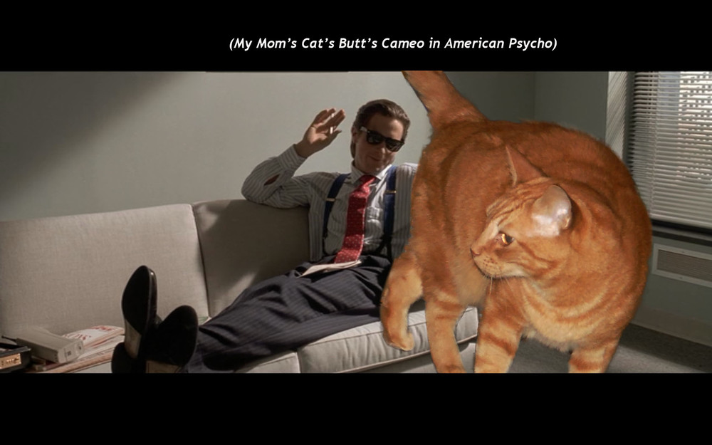 (My Mom's Cat's Butt's Cameo in  American Psycho )