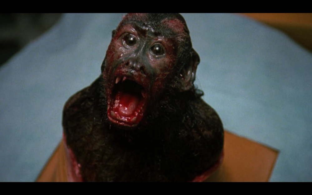 If you want to see a Capuchin monkey imitate a chestburster, then Monkey Shines is the movie for you
