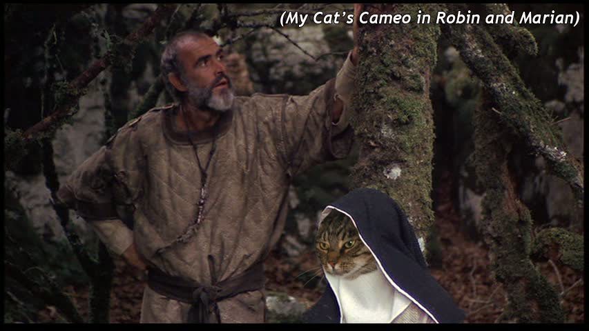 my cat with robin hood and maid marian