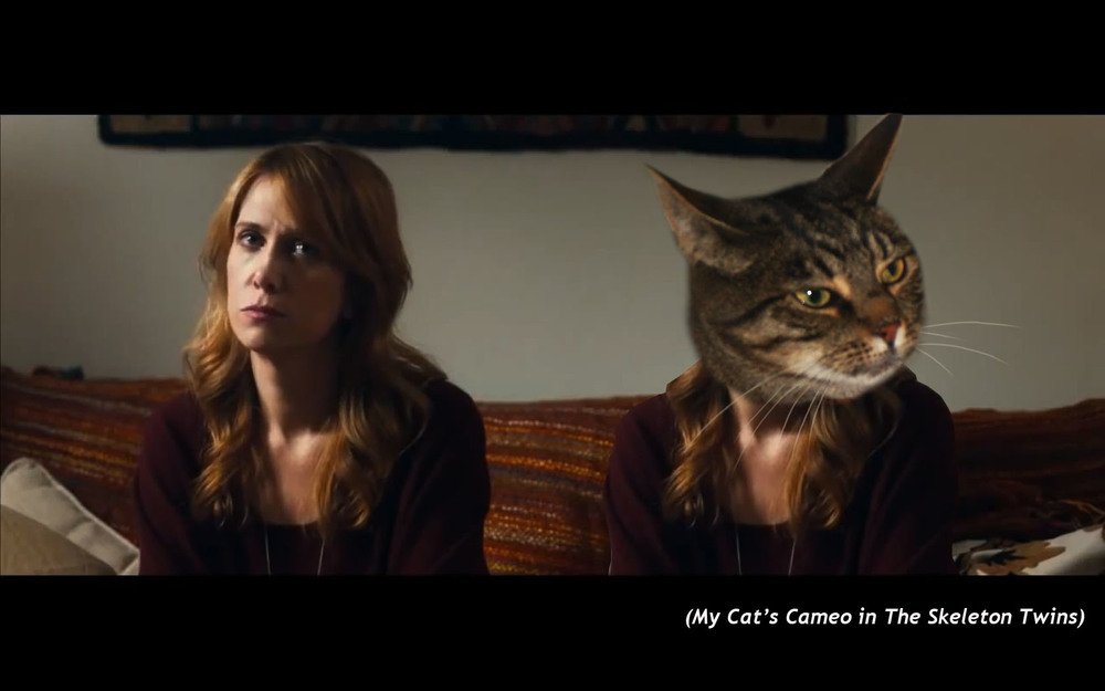 My Cat's cameo in  The Skeleton Twins