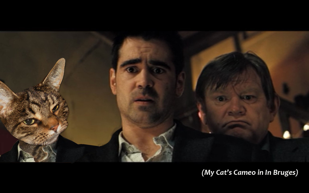 My Cat's Cameo in I n Bruges