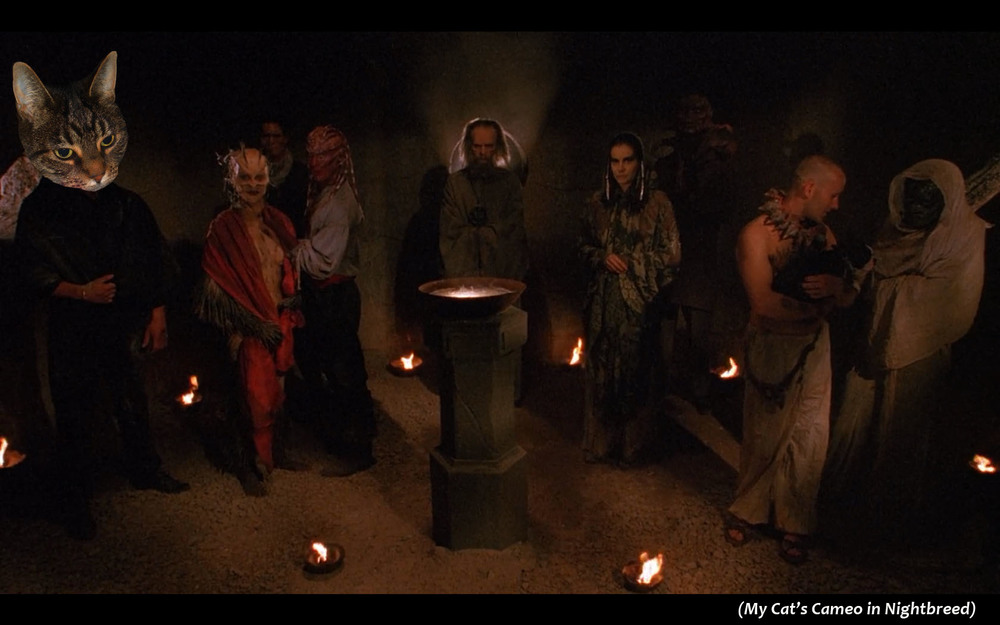 My Cat's Cameo in  Nightbreed