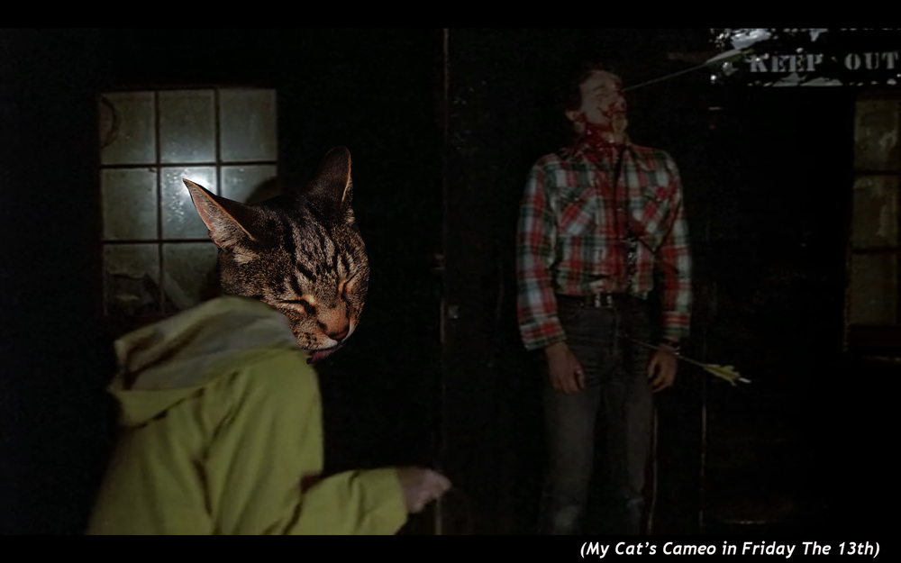 My Cat's cameo  in Friday the 13th