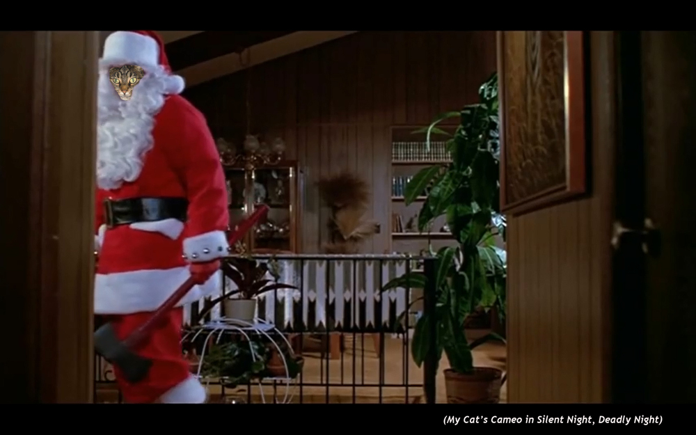 My Cat's Cameo in  Silent Night, Deadly Night