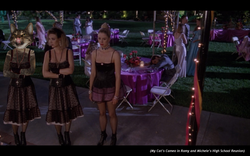 My Cat's Cameo in  Romy and Michele's High School Reunion