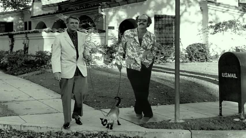 Apparently Shep Gordon shared a cat for awhile with his neighbor Cary Grant?