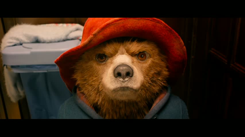 """Paddington in his """"Grizzly Man"""" audition"""