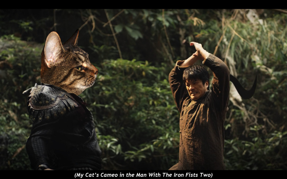 My Cat's Cameo in  the Man With The Iron Fists Two