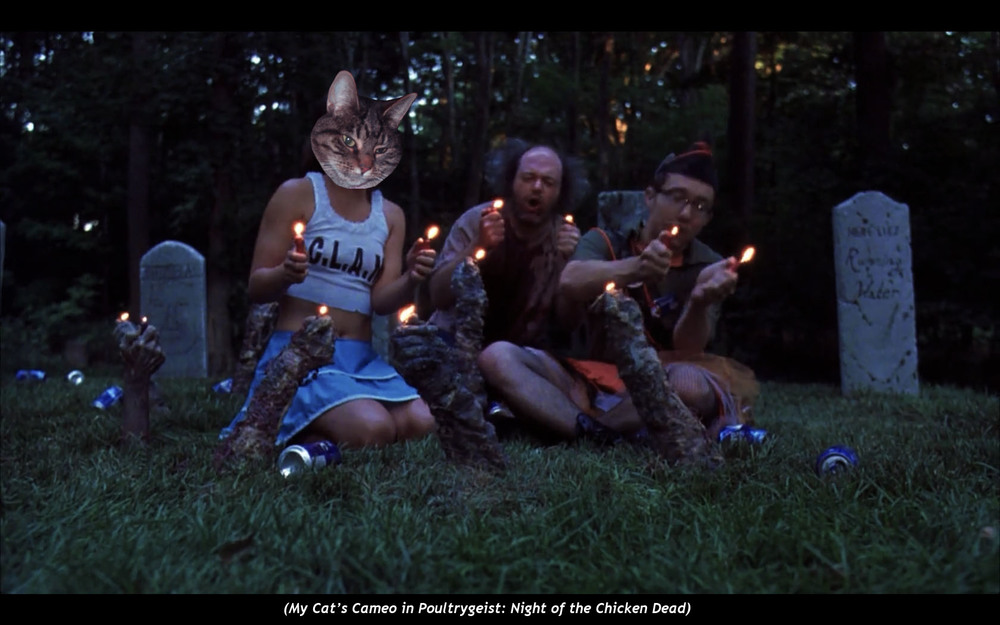 My Cat's Cameo in  Poultrygeist: Night of the Chicken Dead