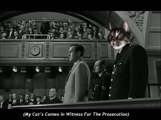 My Cat's Cameo in  Witness for the Prosecution