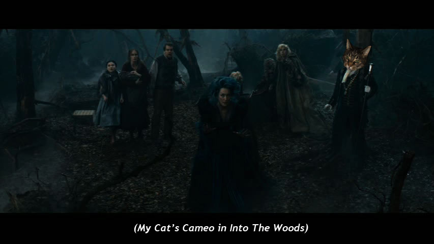 My Cat's Cameo in  Into the Woods