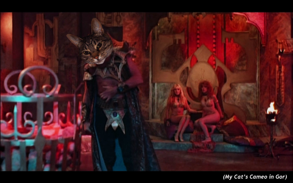 MY Cat's Cameo in  Gor