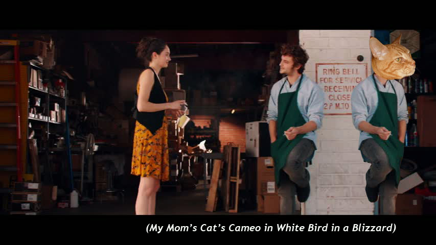 My M om's Cat's Cameo in  White Bird in a Blizzard
