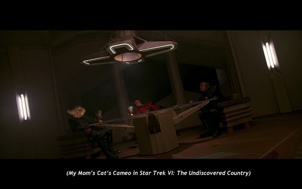 My Mom's Cat's CAmeo in  Star Trek VI: The Undiscovered Country