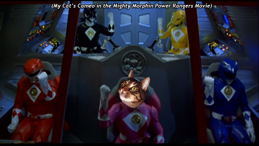 My Cat's Cameo in  the Might Morphin Power Rangers Movie
