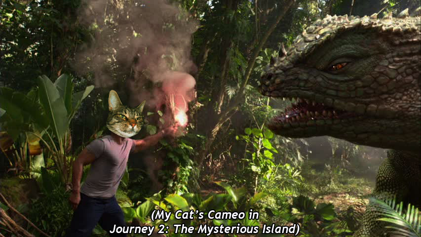 MY Cat's Cameo in  Journey 2: The Mysterious Island