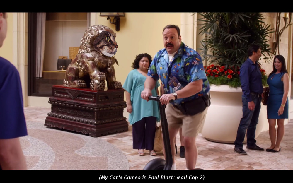 My Cat's Cameo in  Paul Blart: Mall Cop 2