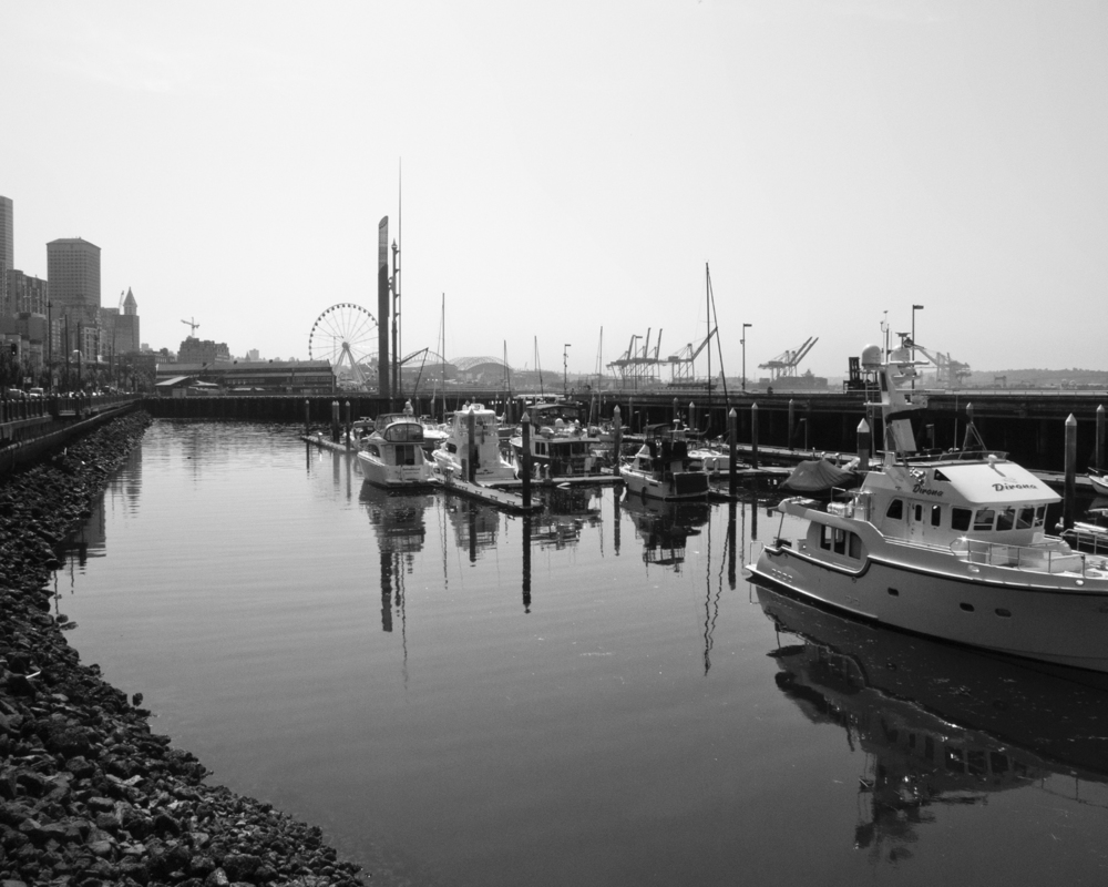 Boats Docked by the Seattle Waterfront