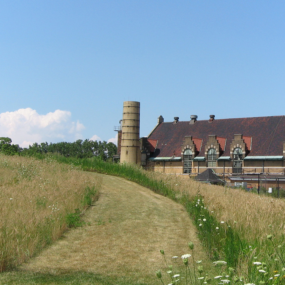Field and Old Building