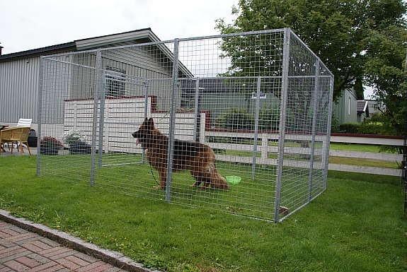 Hundegård sett fra siden