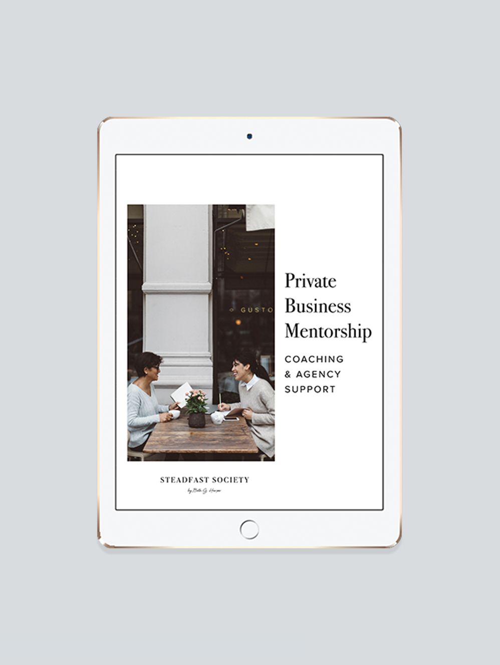 Copy of <p><strong>Private Business Mentorship</strong>By Application Only<a href=private-coaching>More →</a></p>