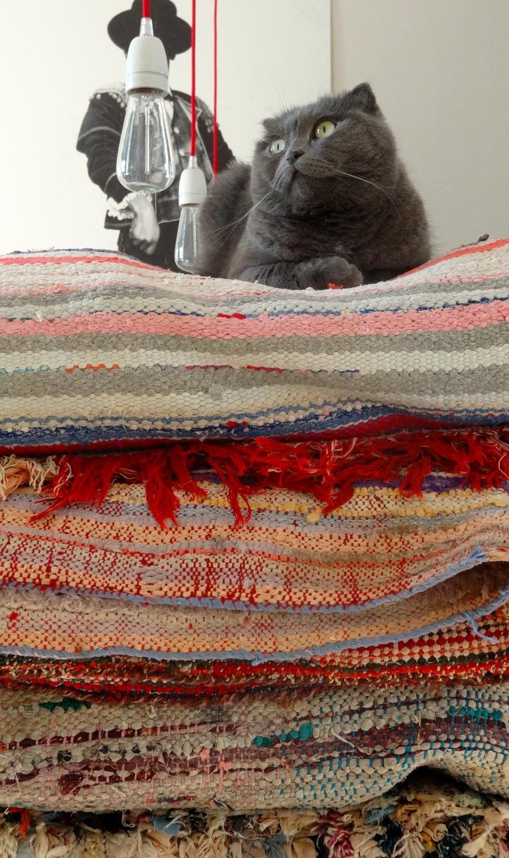 Tartine sur sa pile de tapis Boucharouette
