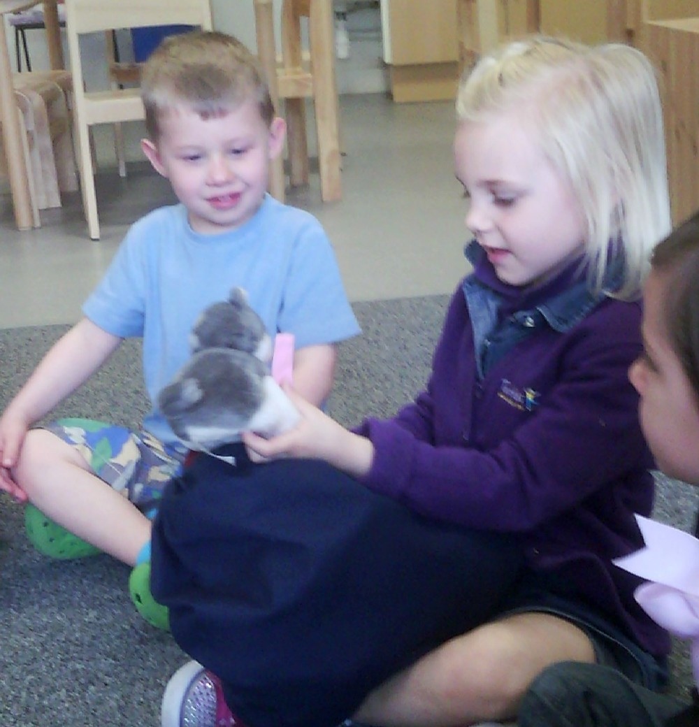 Twinkle Toes Nursery - C'est un chat!  Spring 2015